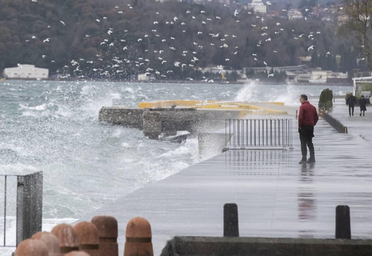 Aallot vyöryvät laiturille, taustalla lokkilauma.