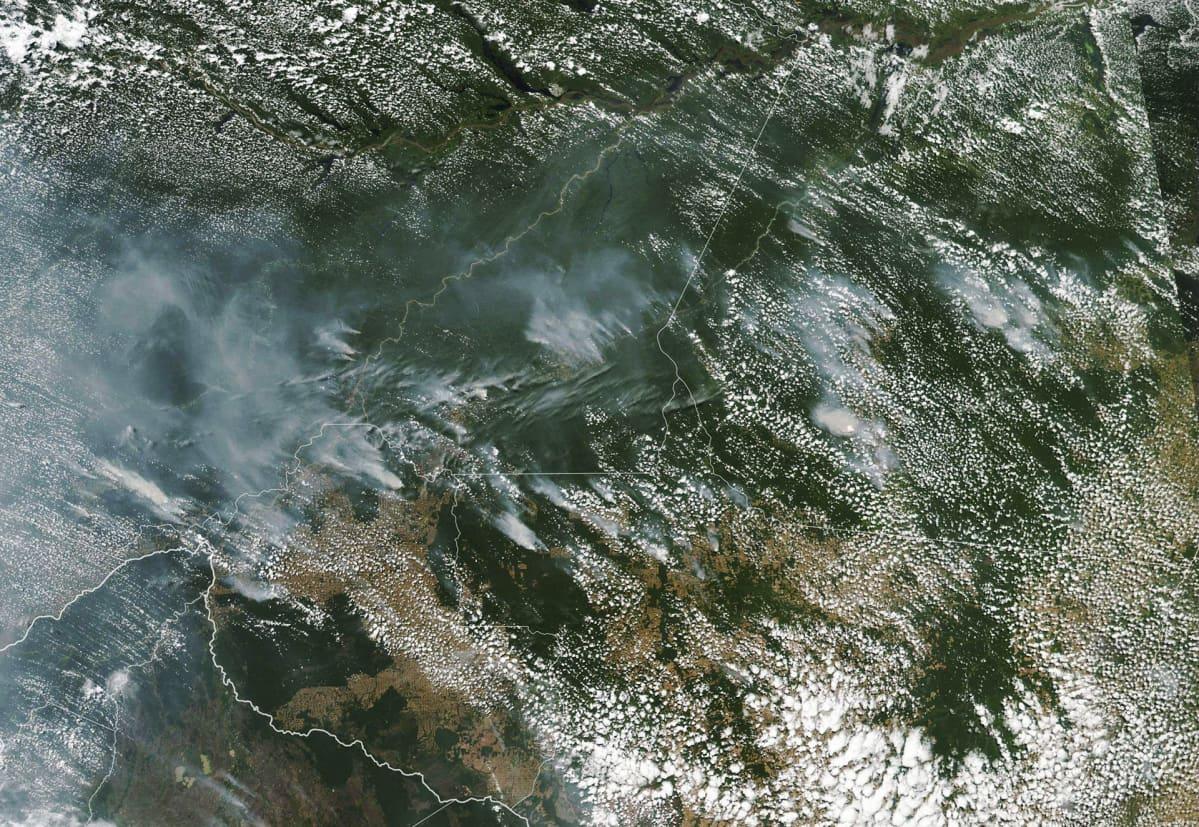 Metsäpaloja satelliittikuvassa