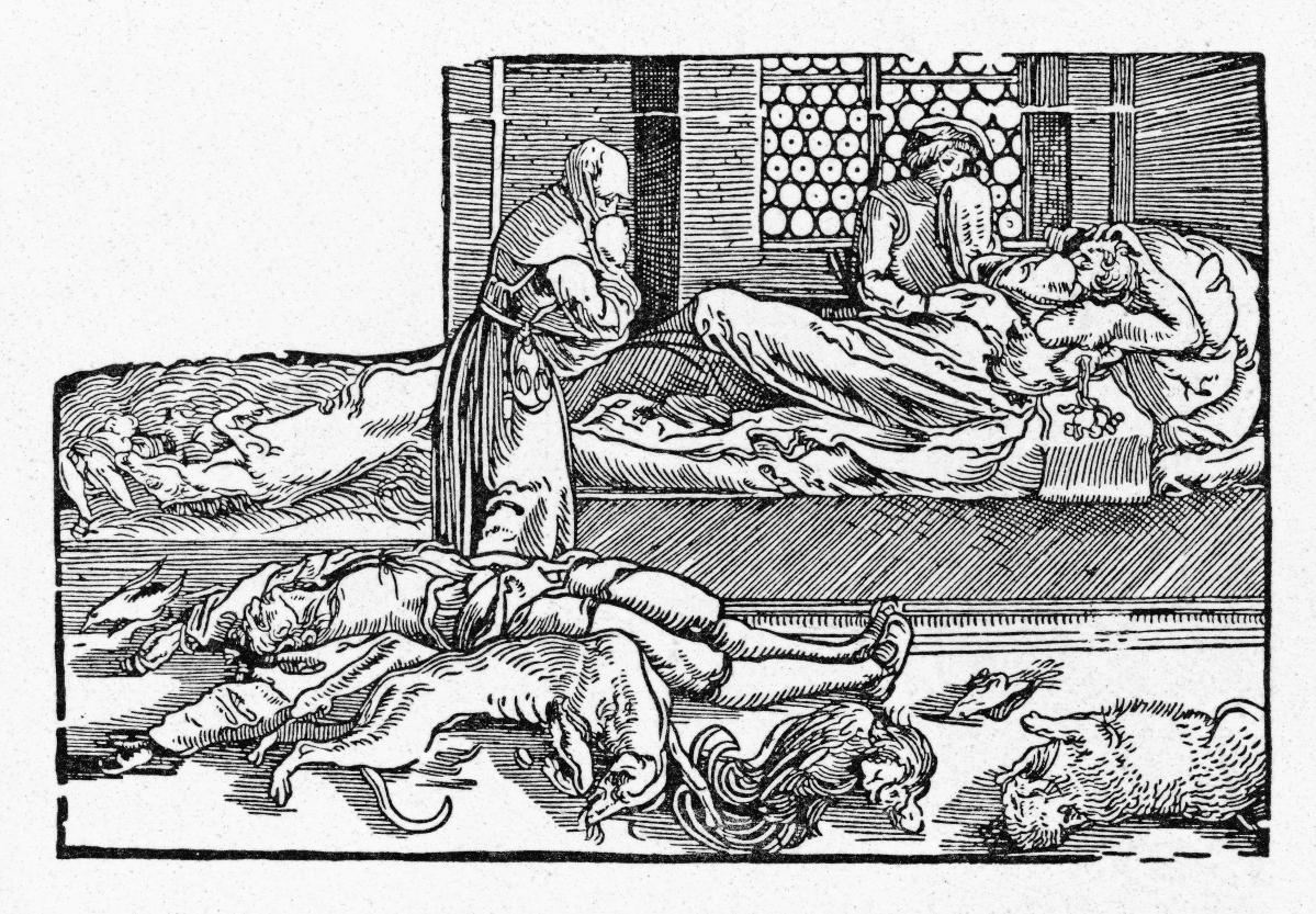 Piirros mustan surman uhreista. Nainen kantaa vauvaa. Lattialla on ruumis ja kuolleita eläimiä. Sängyllä makaa mies tuskissaan.