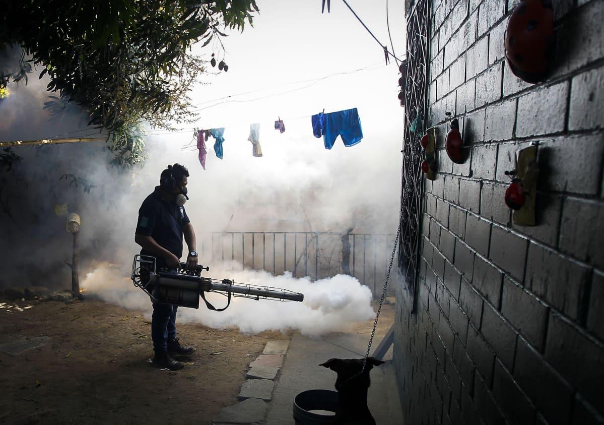 El Salvadorin terveysministeriön työntekijä torjuu moskittoja asuintalosta lähellä pääkaupunkia San Salvadoria.