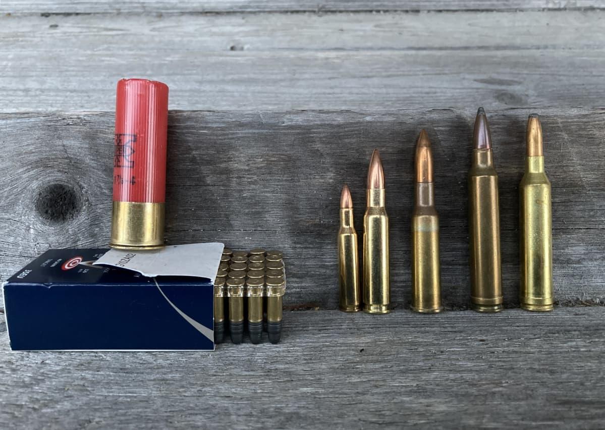 Kuvassa erilaisten aseiden panoksia.