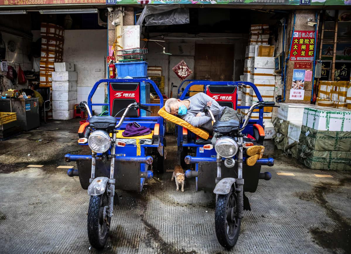 Suljettu kalatori Guangzhoussa Kiinassa.