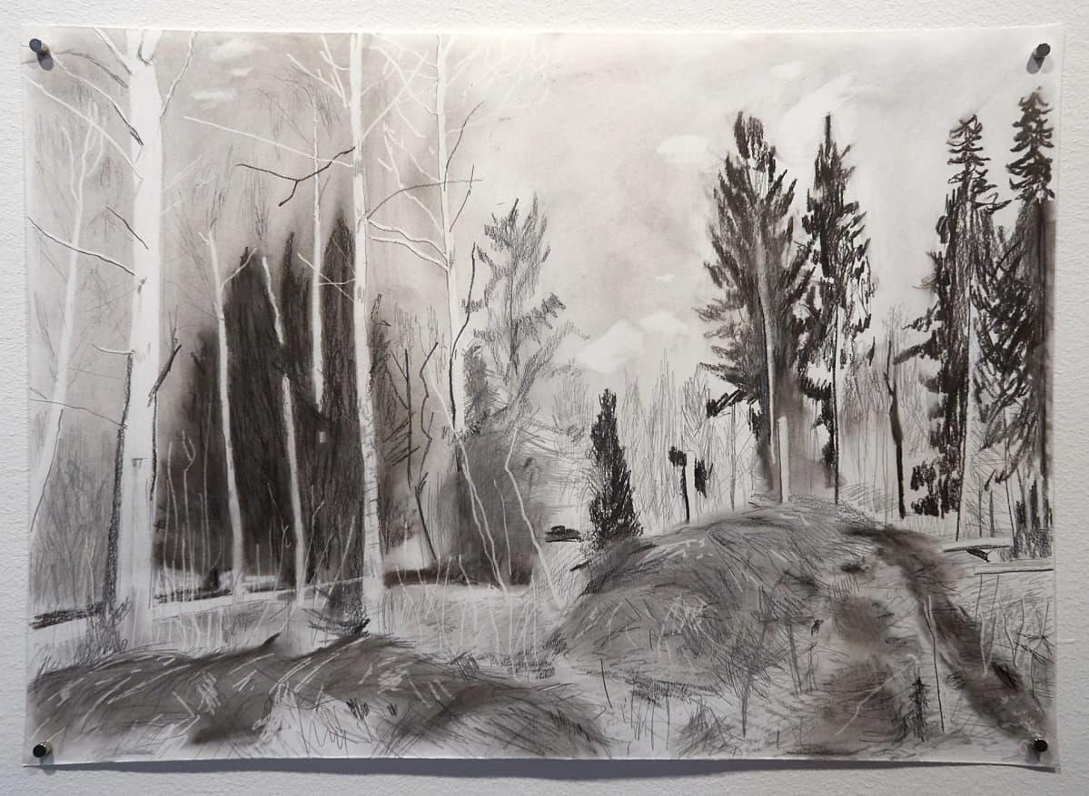 VERA DEN AREND, hiilipiirros metsästä