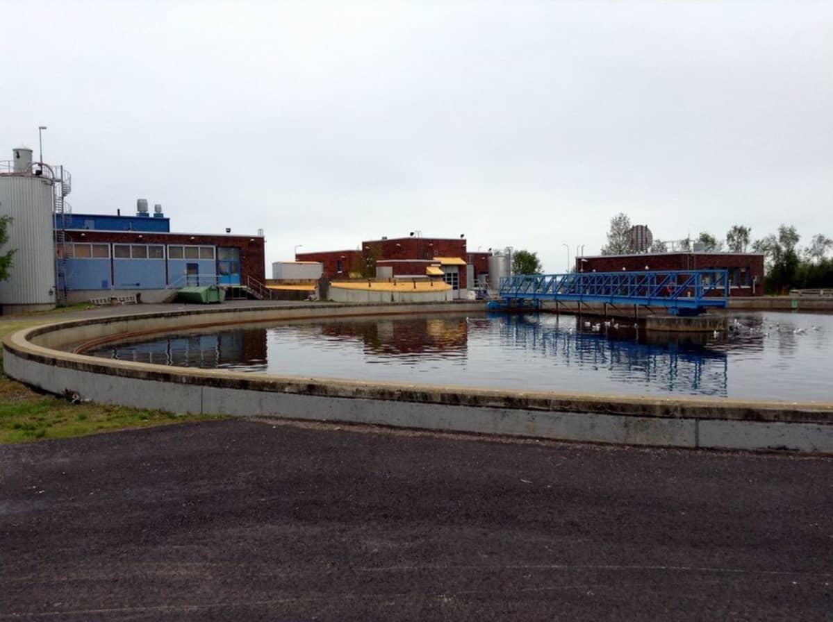 Selkeytysallas Taskilan jätevedenpuhdistamolla Oulussa.