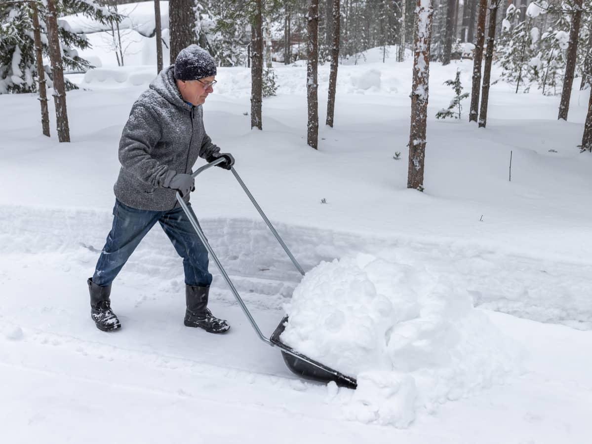 Jorma Paavilainen kolaa lunta pihassa.