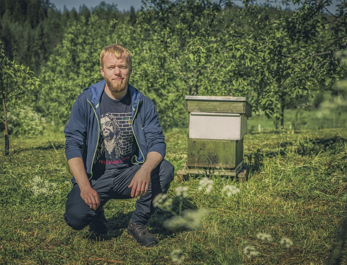 Mies on kyykyssä mehiläispesän edessä