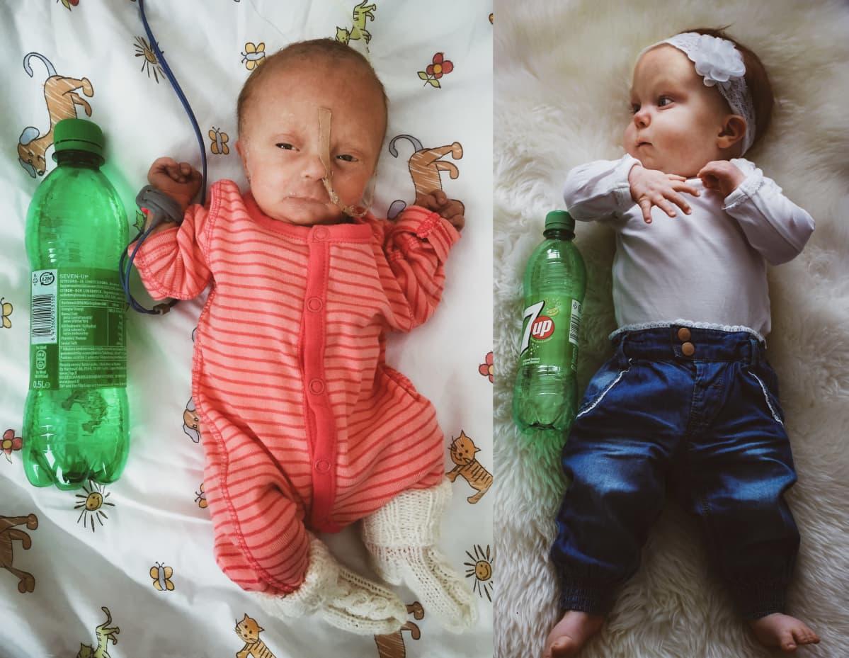 Hilda oli vastasyntynyeenä vain vähän suurempi kuin limonadipullo, mutta yksivuotiaana hän oli kasvanut jo pitkälle pullon ohi.
