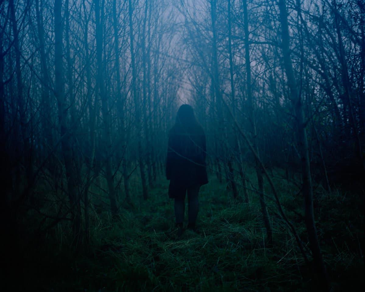 Valokuvateos, jossa tumma hahmo seisoo hämärässä lehdettömien puiden ympäröimänä.