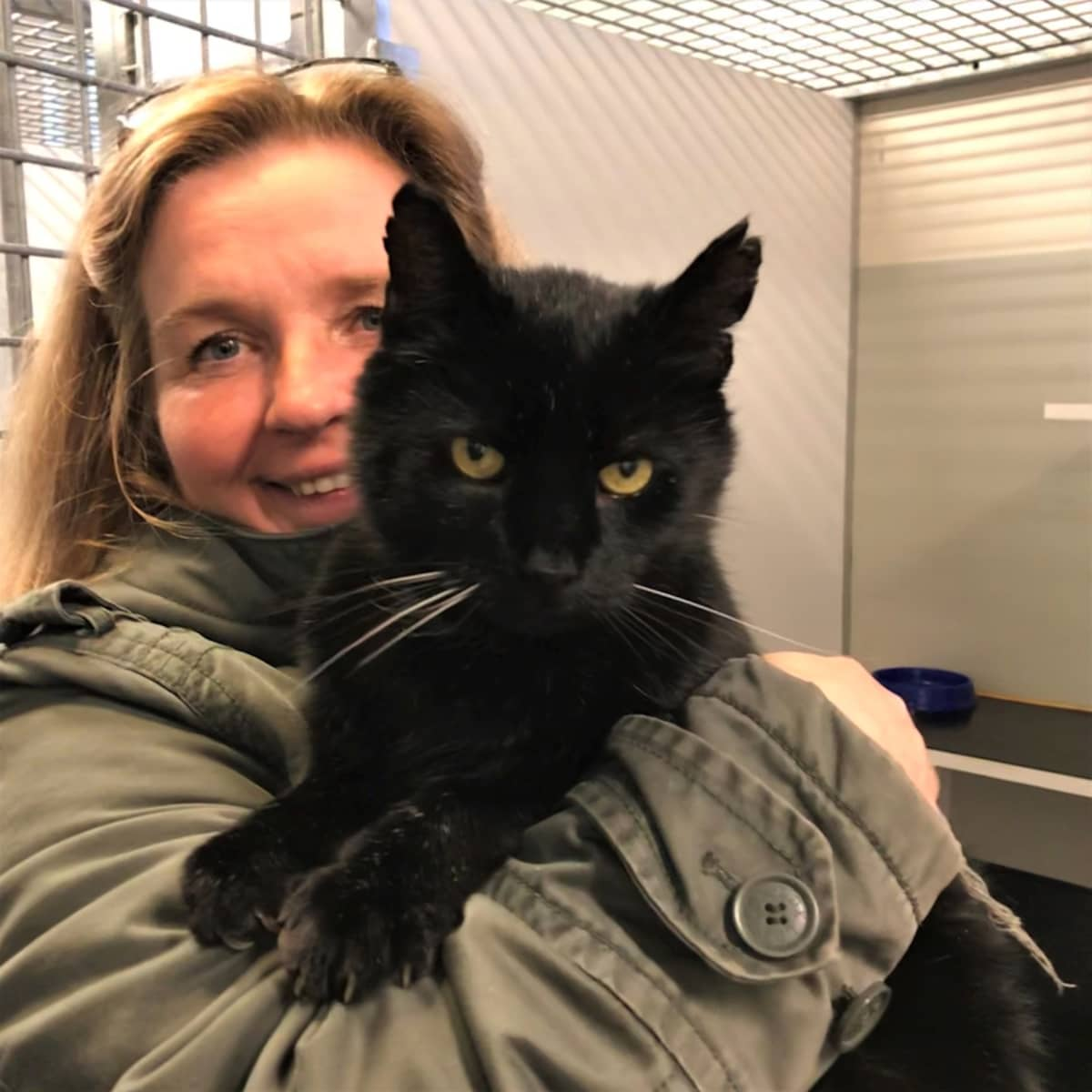 Musta kissa naisen sylissä