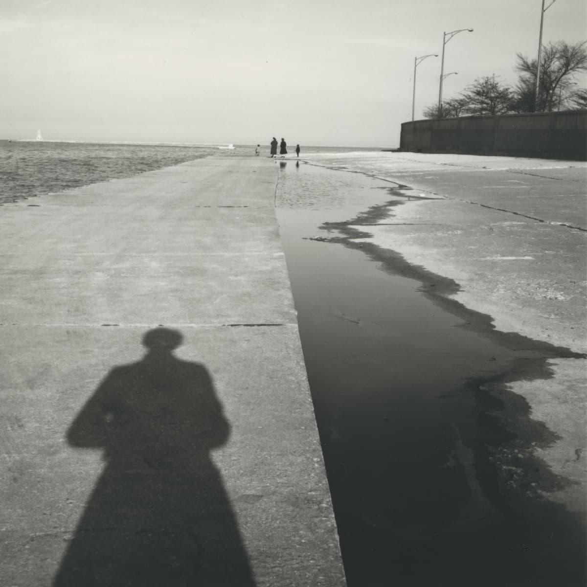 Vivian Maierin omakuva, varjo