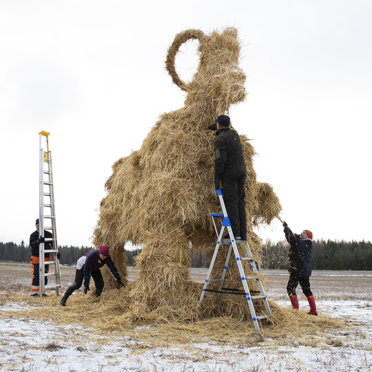 Vapaaehtoiset rakentavat olkipukkia.
