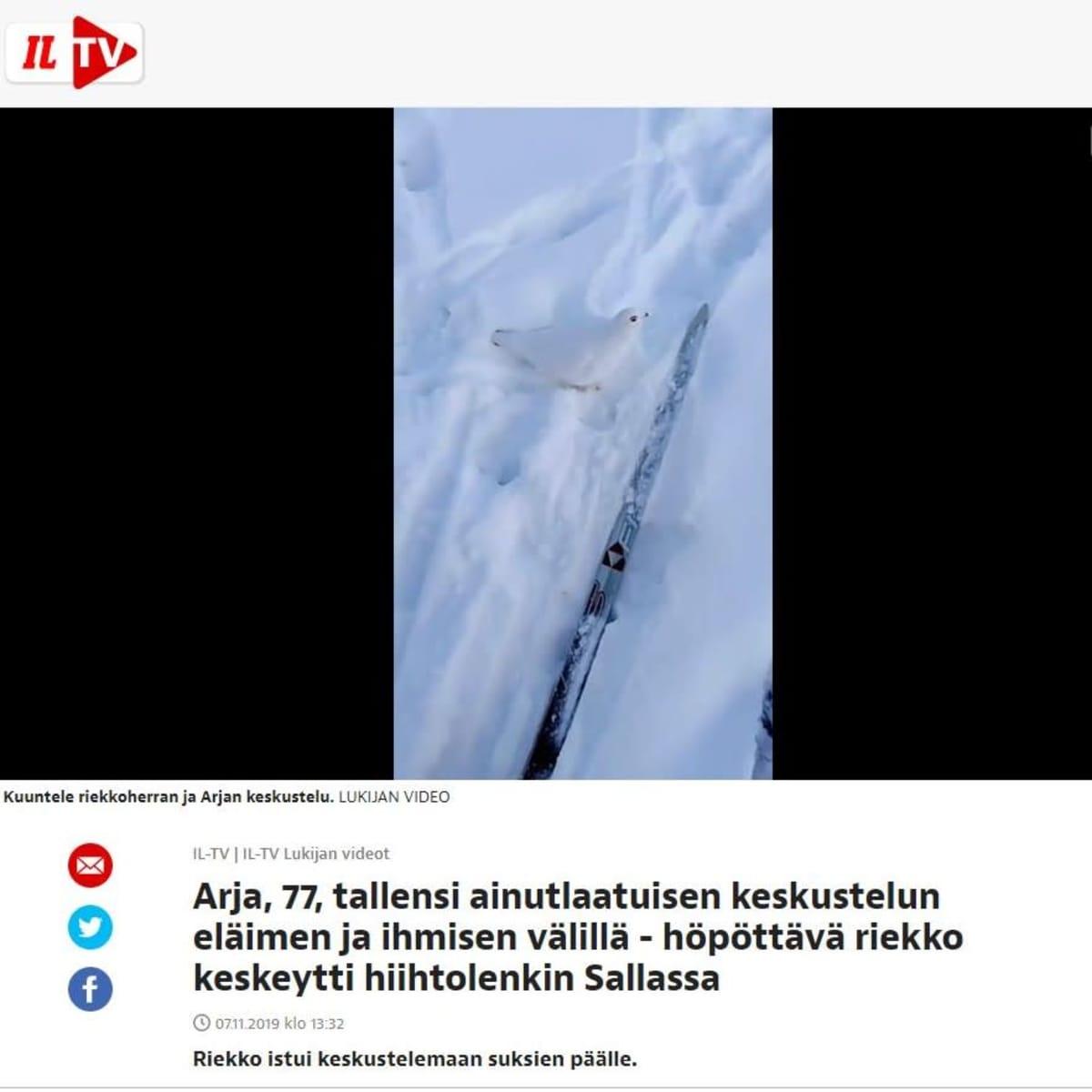 Kuvakaappaus Ilta-Lehden videosta, jossa heidän lukijansa kohtaa hiihtolenkillään riekon.
