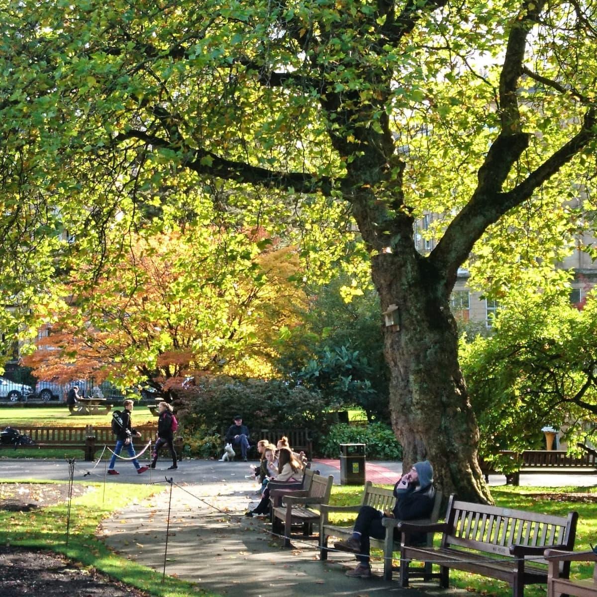 Ihmisiä kävelemässä ja istumassa puistossa.