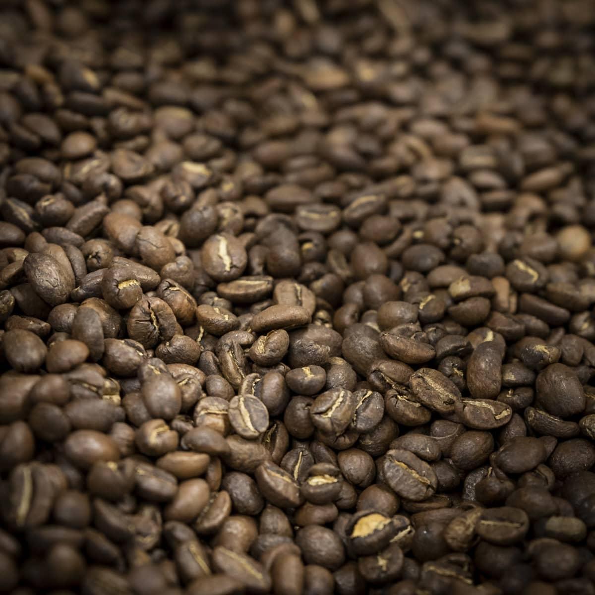 Paahdettuja kahvipapuja.
