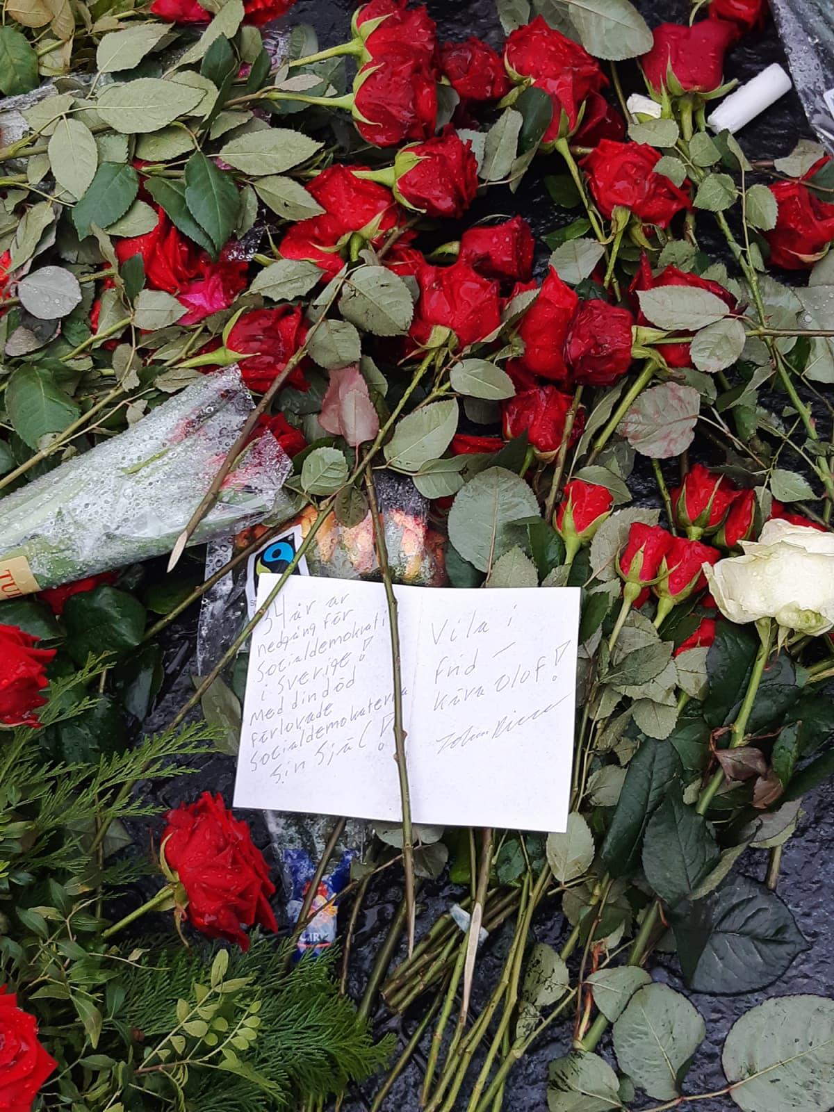 Kuvassa on Olof Palmen hauta, jolle on tuotu punaisia ruusuja.