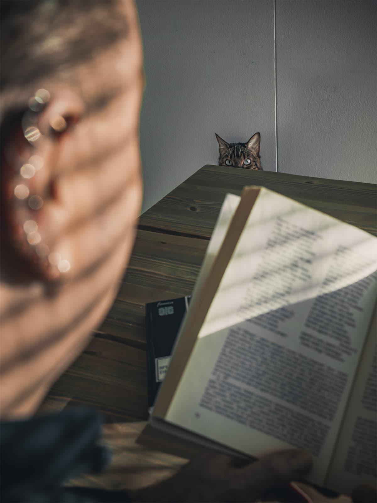 Kissa nimeltään Edith Veikkolainen katsoo kun Marcello Ganassini lukee kirjaa.