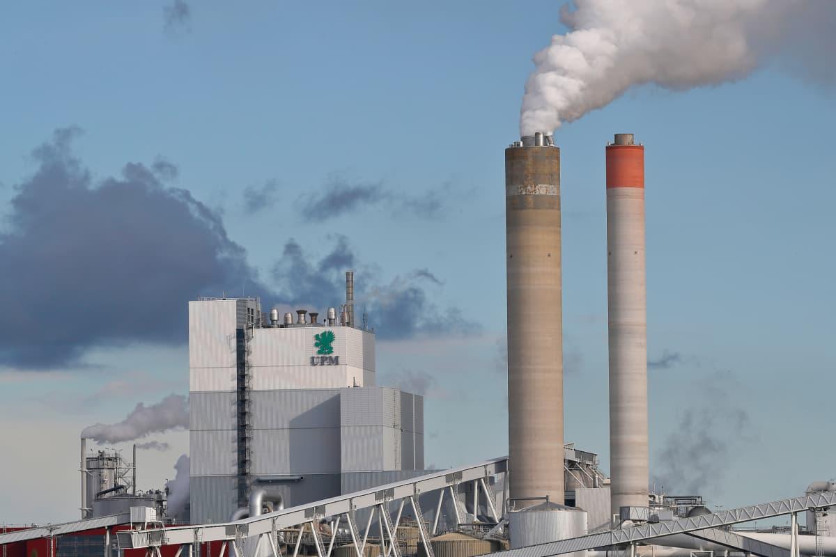 UPM paperitehdas