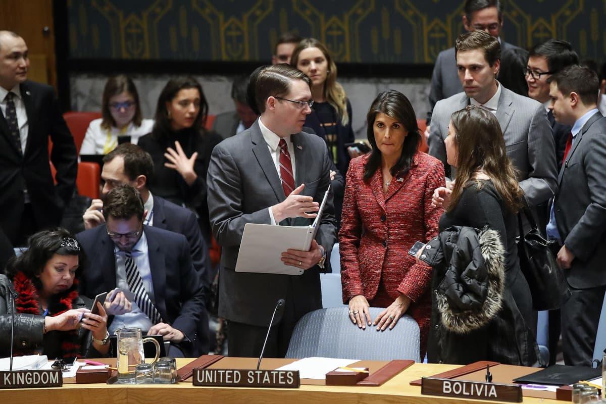 YK:n turvallisuusneuvoston kokous New Yorkissa
