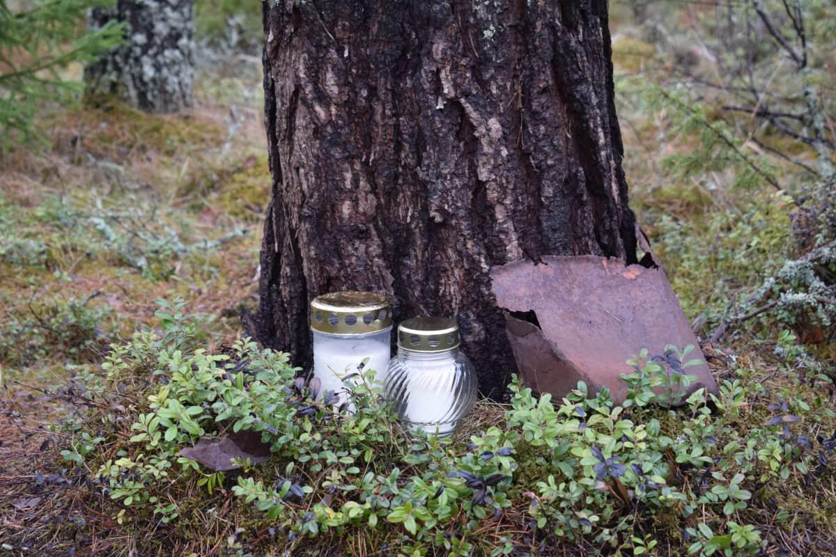 Hautakynttilöitä puun juuressa.