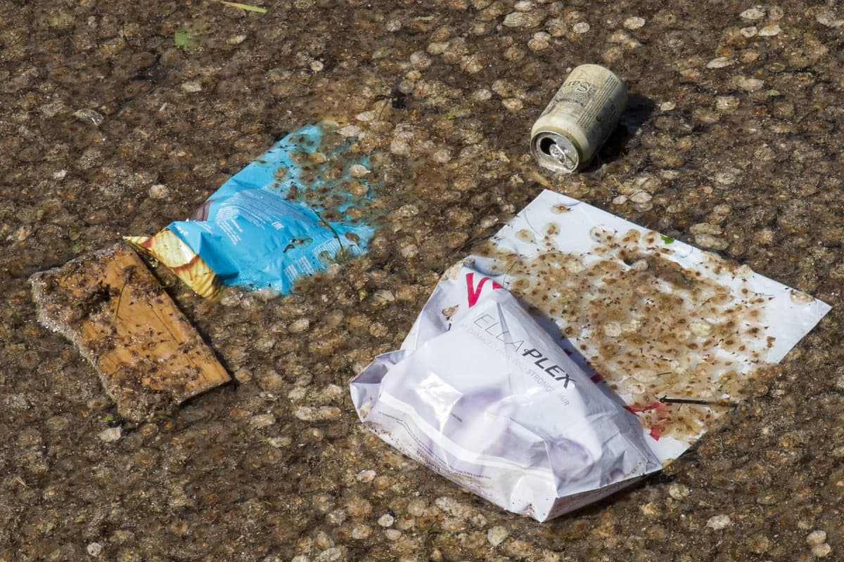 roska, jäte, Tokoinranta, meri