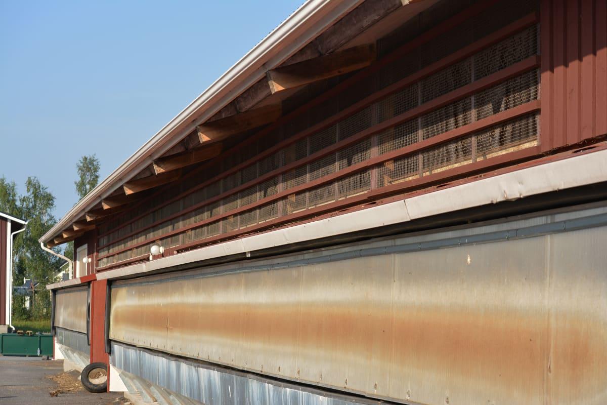 Kaikki rakennusten ovet, sivuseinät ja savupiiput on suojattu naakkojen takia.