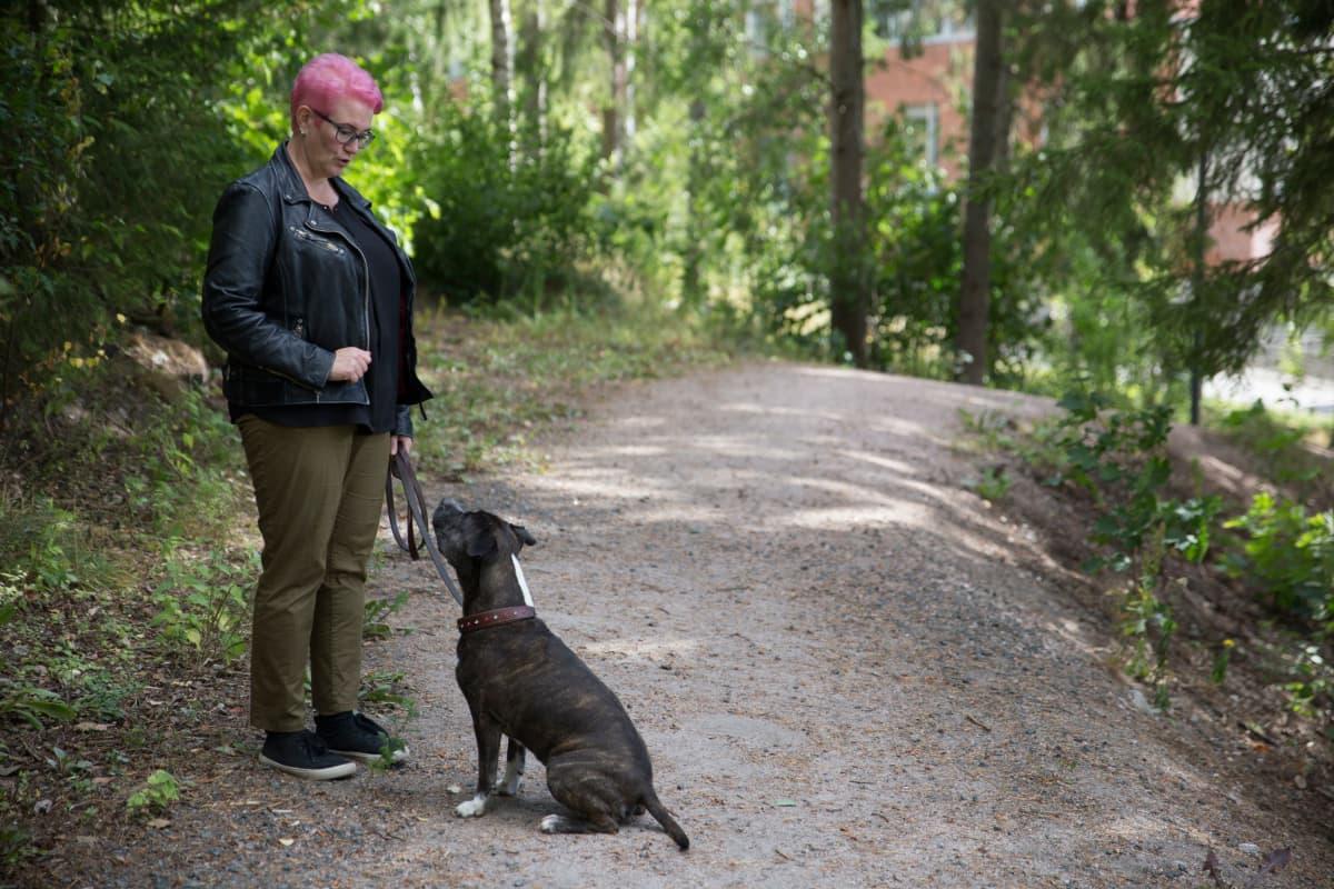 Maarika Wallenius Suomen Amerikanstaffordshirenterrieriyhdistyksen pentukummi ja amstaffi Rusina