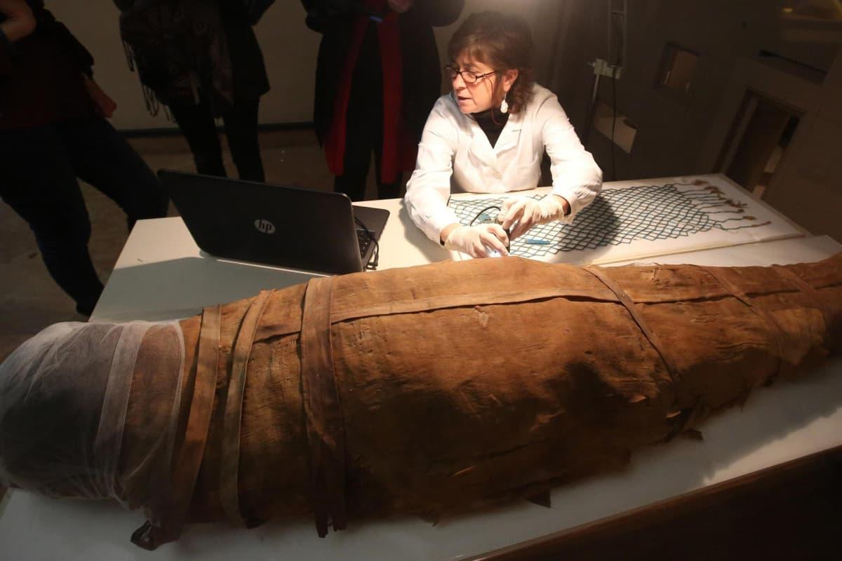 Muumio Bolognan museossa.