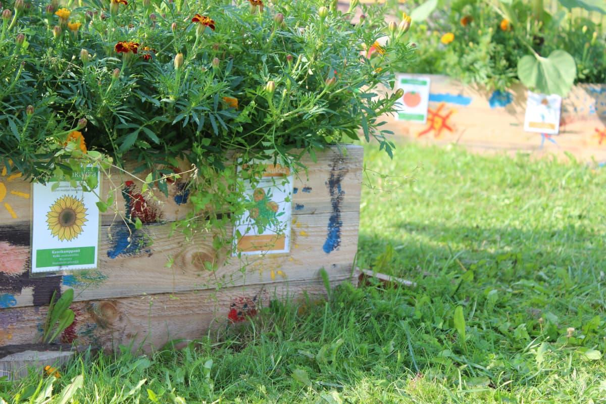 Upseerin päiväkodin puutarha Kouvolassa