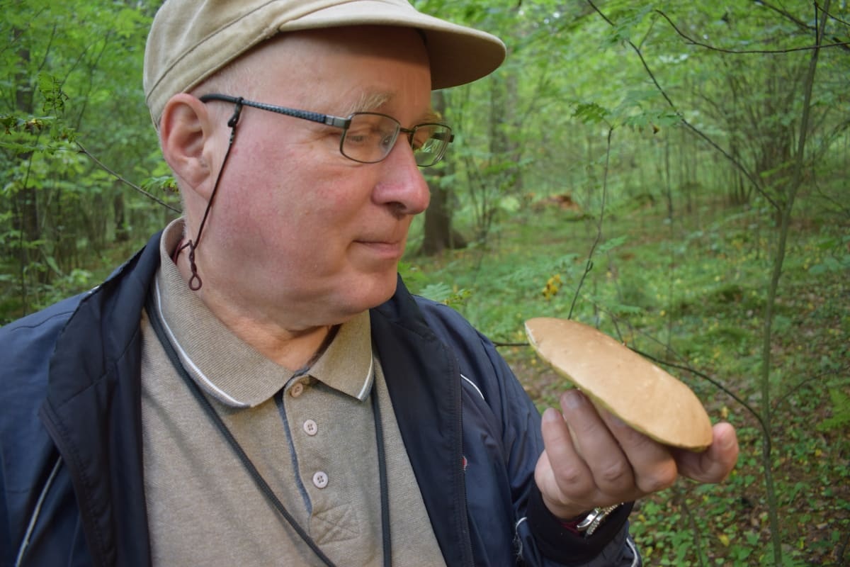 Sienitutkija Jouni Issakainen tutkii tattia.