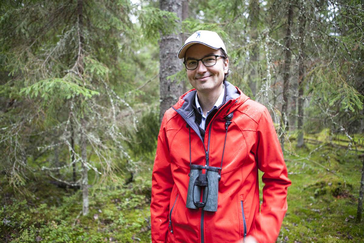 Panu Kuokkanen, Metsähallituksen erikoissuunnittelija