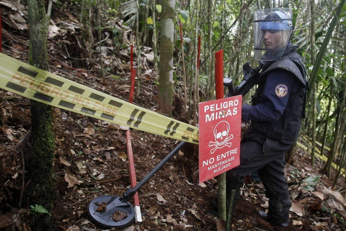 Kolumbian armeijan sotilas harjoittelee miinan etsintää maaliskuussa 2015.