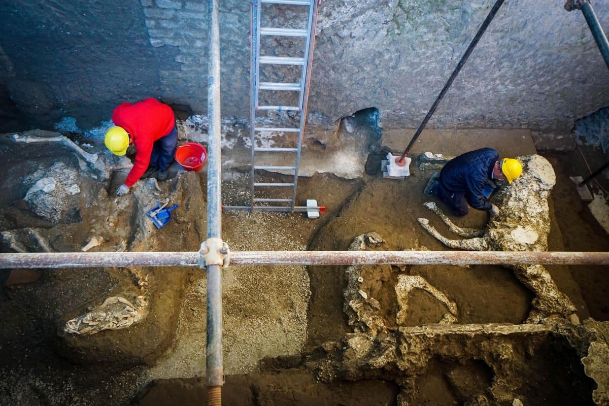 Muinaisen Pompeijin alueelta kaivetusta talllista on löydetty useiden hevosten jäänteitä.