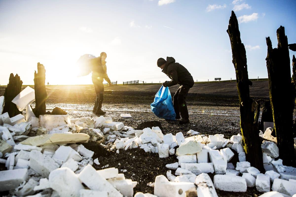 Vapaaehtoiset siivoavat MSC Zoen konteista rantaan huuhtoutuneita pakkauksia Moddergatissa Hollanissa.
