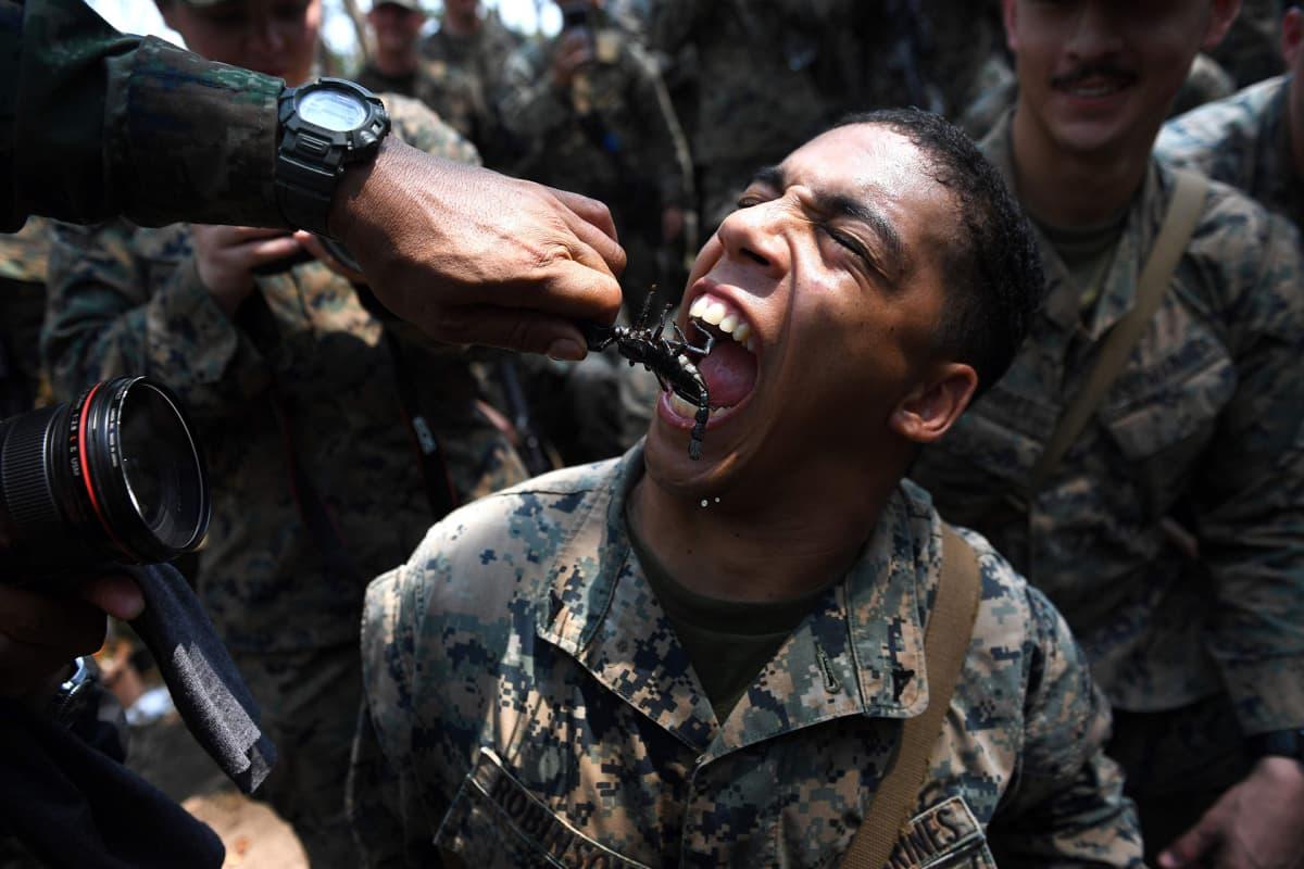 Amerikkalainen merijalkaväen sotilas syö skorpionin harjoitusleirillä viidakossa.