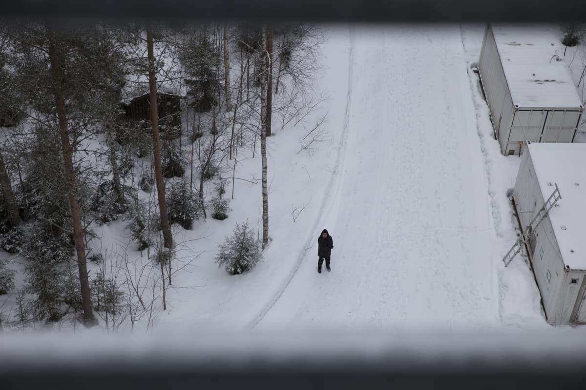 Markku Kulmala, Hyytiälä, metsäasema, ilmastonmuutos
