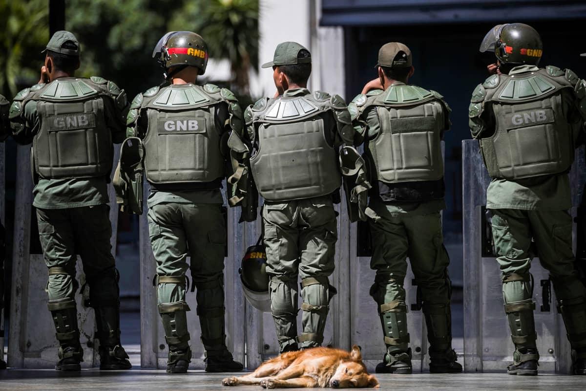 Koira lepää maassa taustallaan Venezuelan GNB:n poliisvoimia.