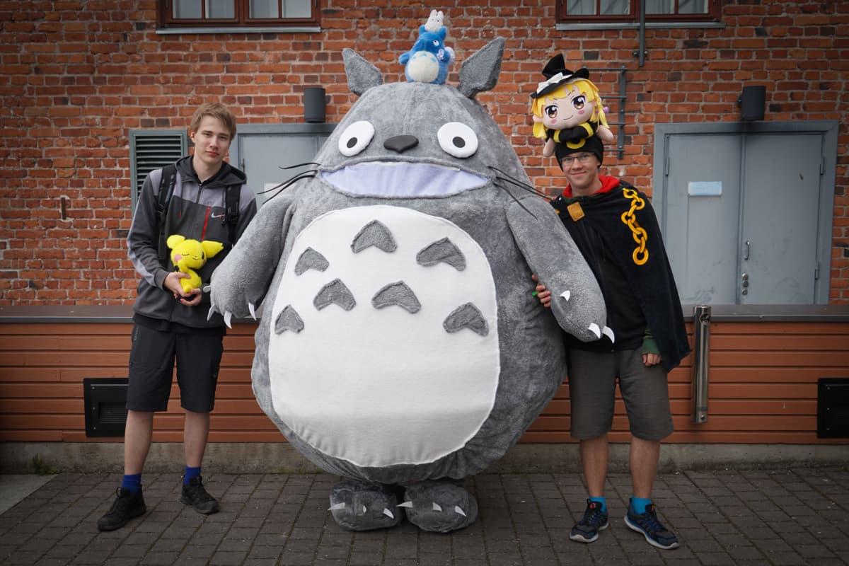 Totoro, Desucon, cosplay