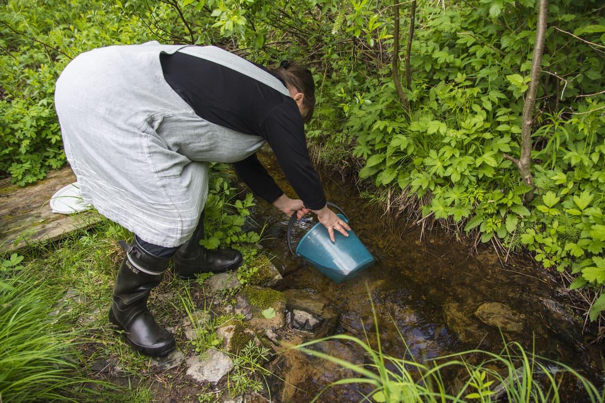 Riitta Nykänen ottaa vettä purosta