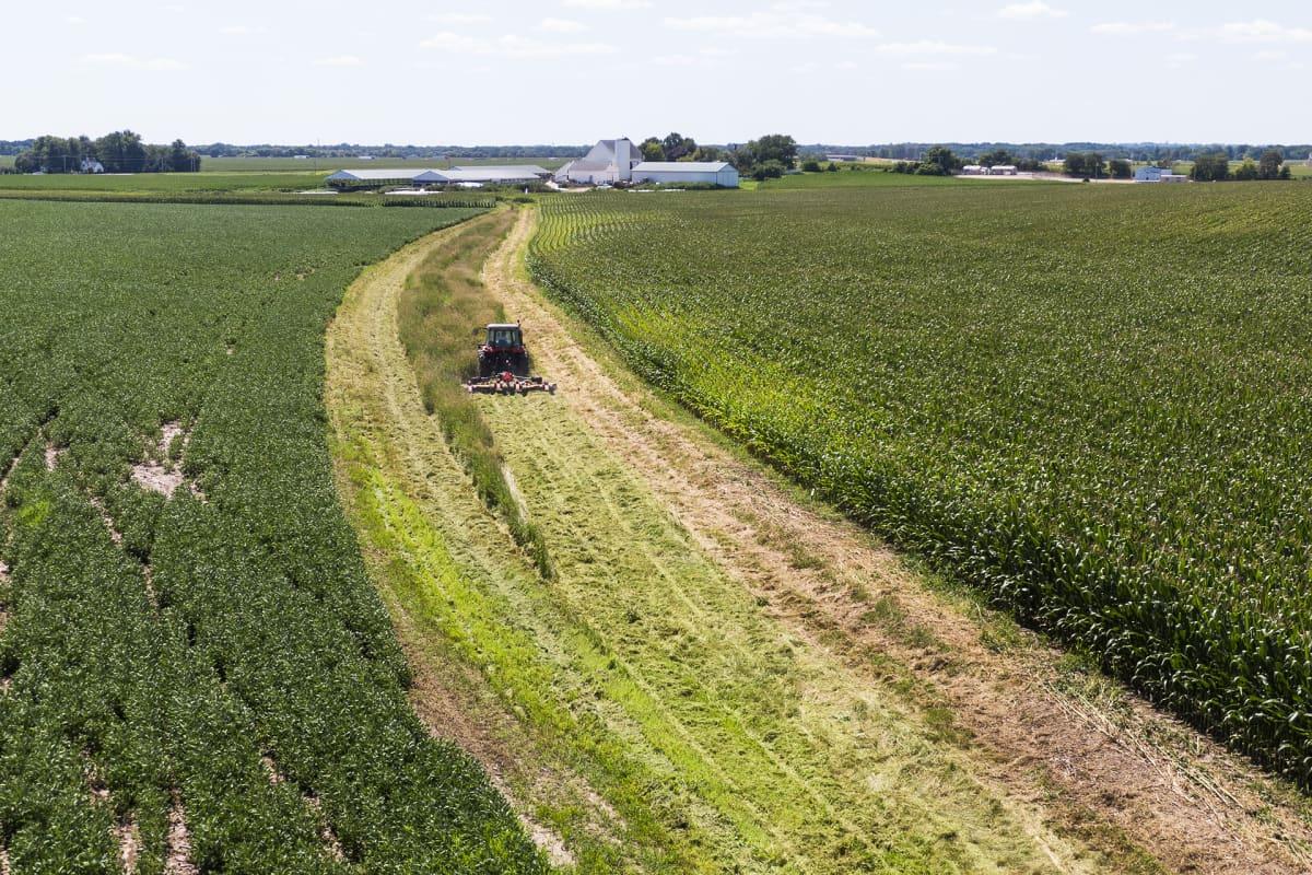 Soijapeltoa Beloitissa Wisconsinissa.