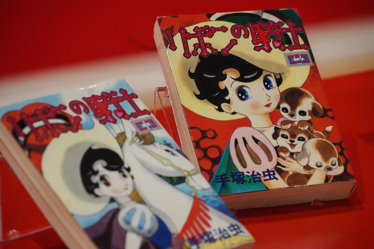 Manga, Osamu Tezuka, Tampereen taidemuseo, Princess Knight