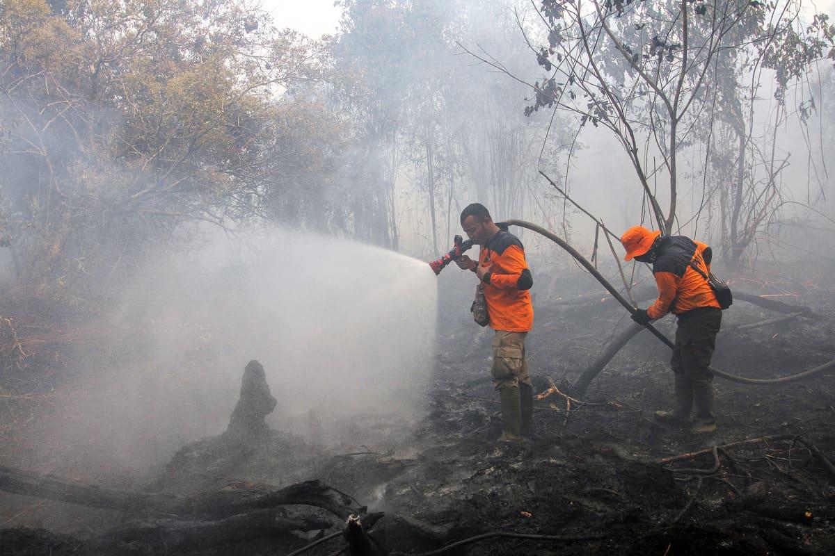 Palomiehiä sammuttamassa maastopaloa Kamparissa Riaun alueella Indonesiassa.
