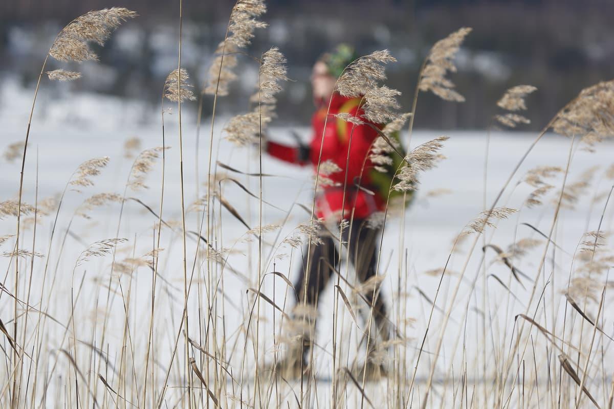nainen hiihtää jäällä