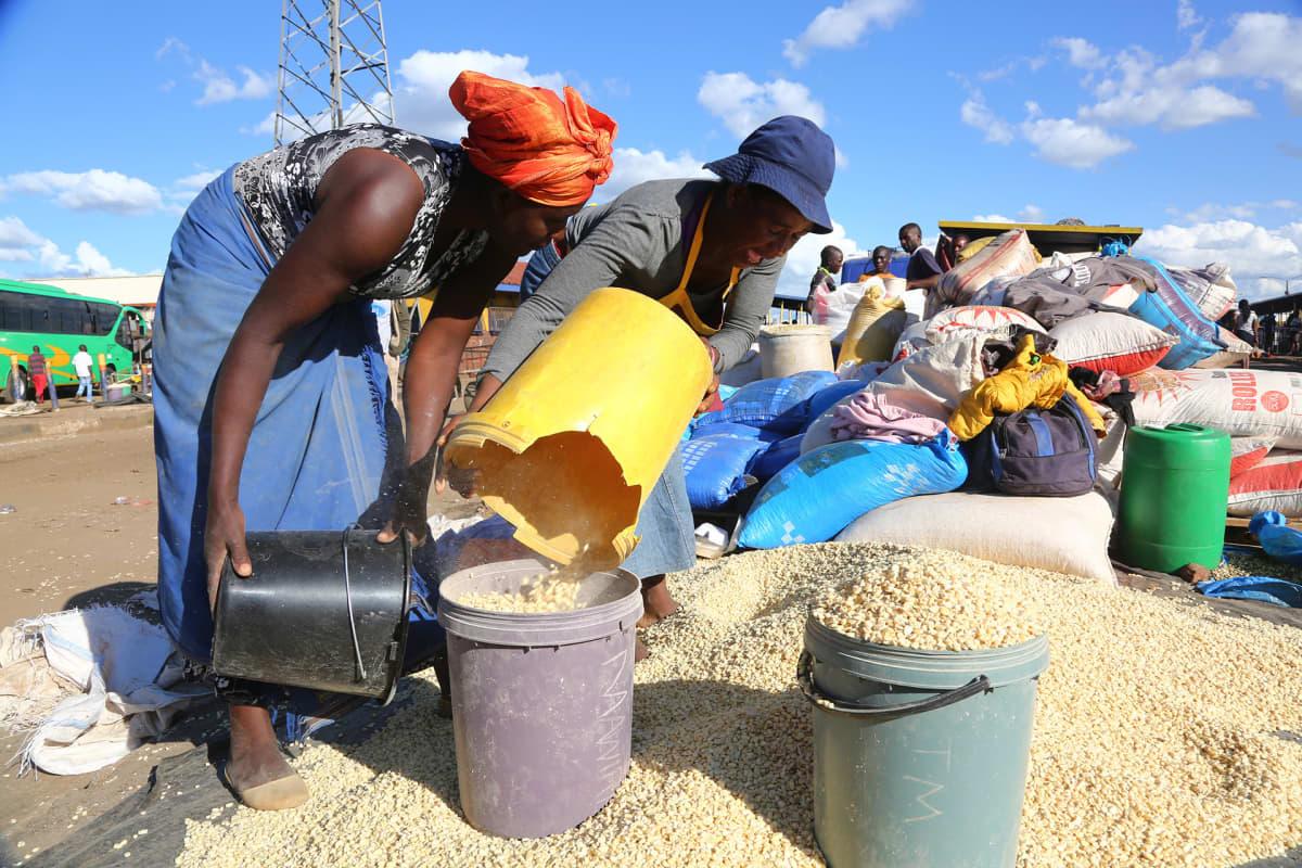 Maissin myyntiä Hararessa, Zimbabwessa.