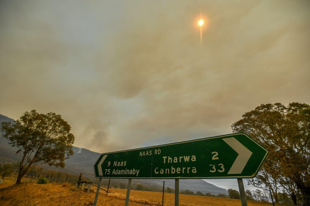 Tulipalorintama Tharwan kaupungin lähellä, 30 km Canberrasta.