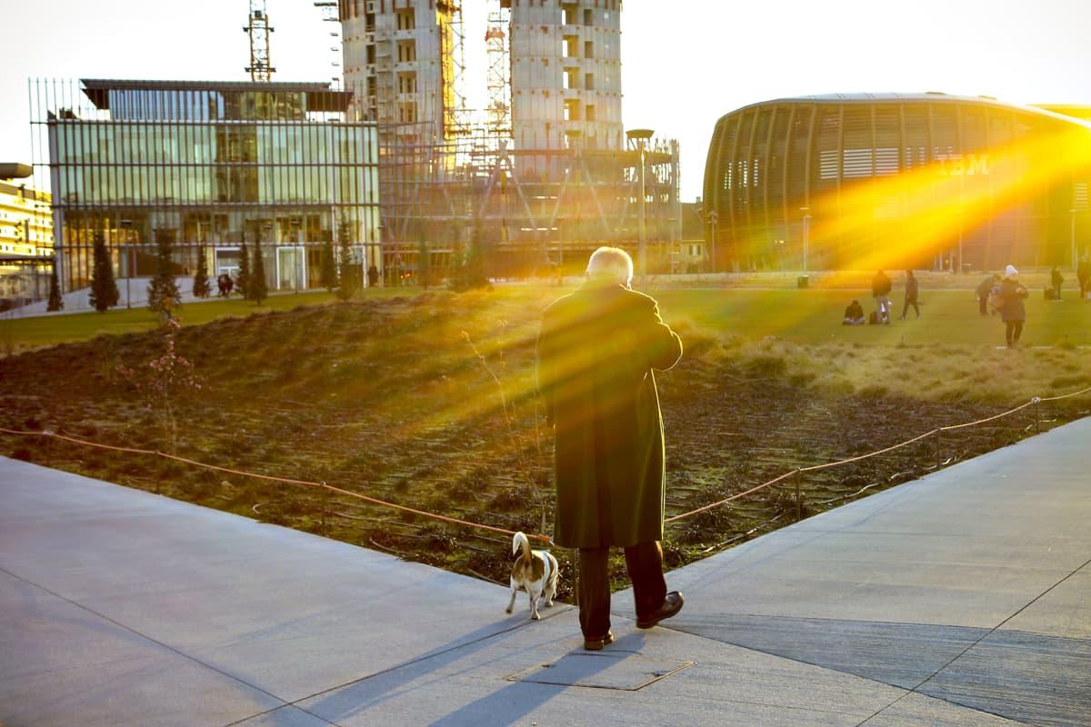 Mies kävelyllä koiran kanssa. Aurinko laskee.