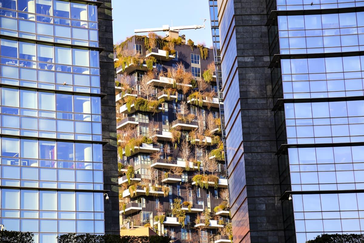 Vihertalo kahden lasisen, korkean kerrostalon välissä.