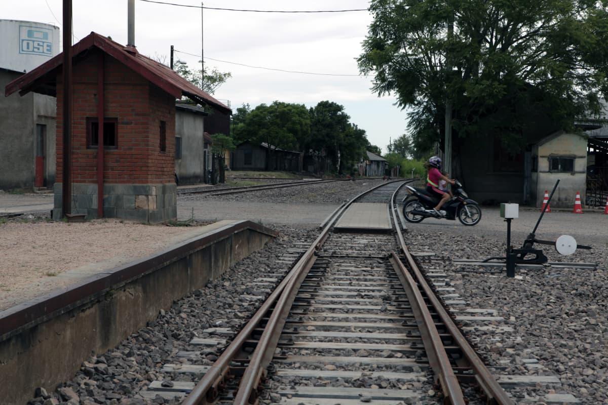 Junarataa Paso de los Torosissa