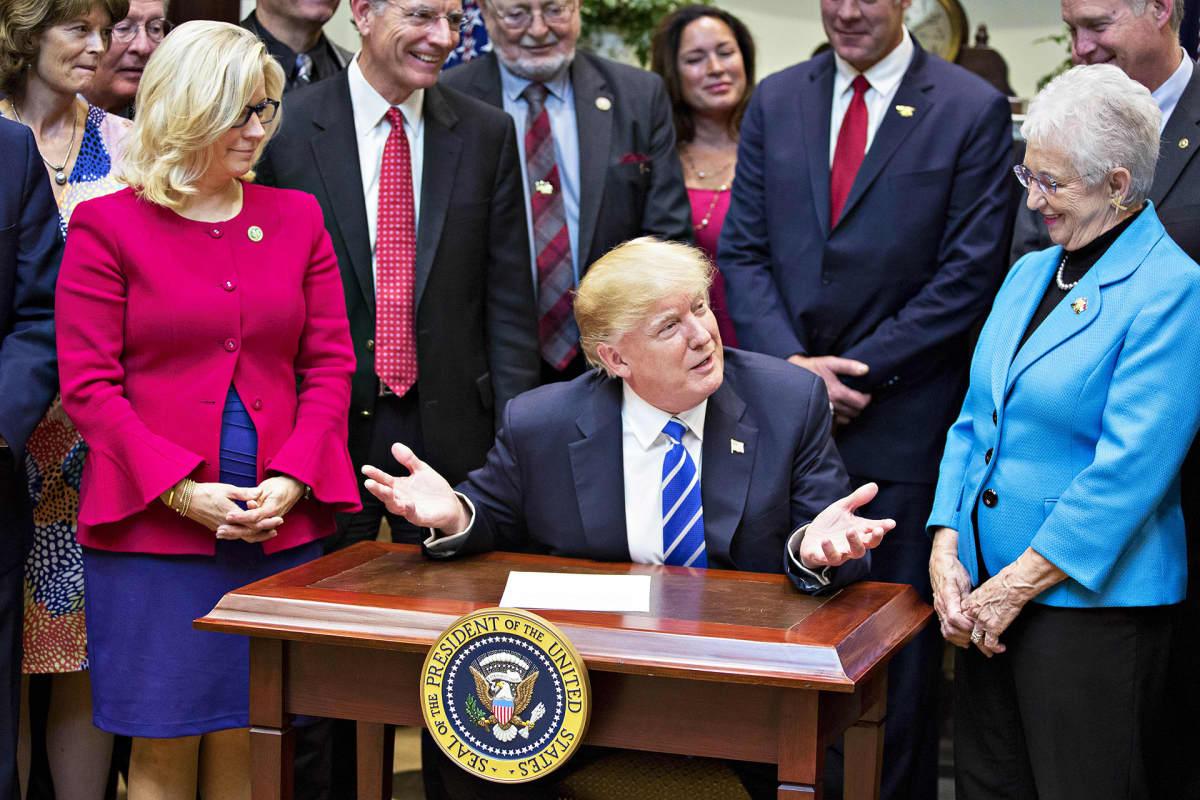 Donald Trump allekirjoitti presidentin asetuksia Valkoisessa talossa 27. maaliskuuta 2017. Liz Cheney oli mukana tilaisuudessa muiden republikaaniedustajien kanssa.