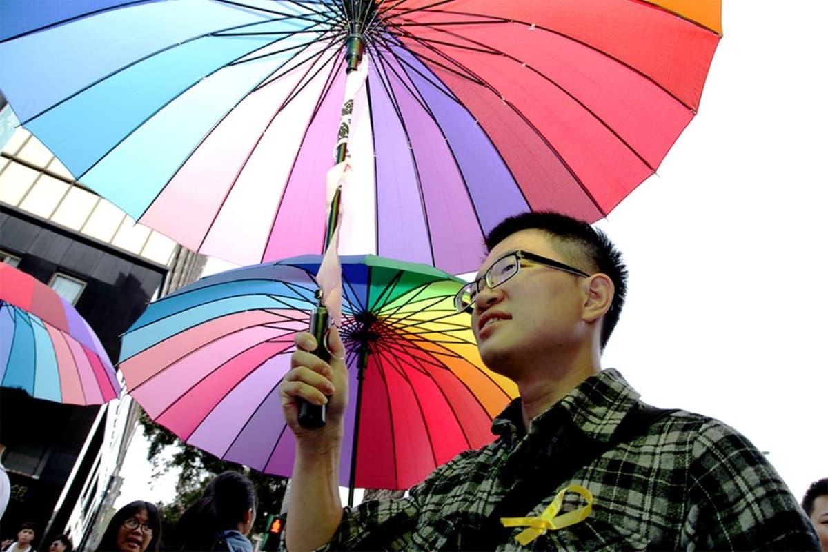 Homo Japani suku puoli