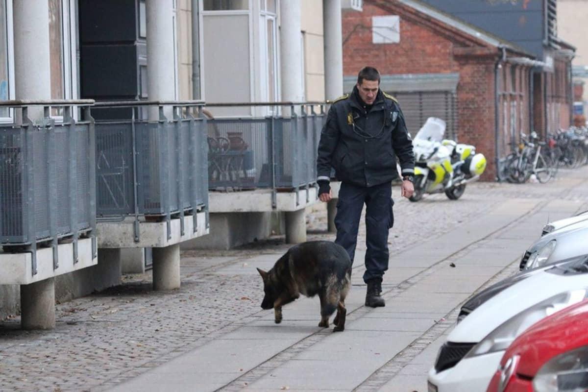 Poliisit koirineen tutkivat aluetta ammuskelupaikan ympärillä.